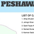 Peshawar By-elections Constituency Infographics